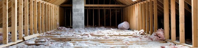 Wildlife in Attics: One of the Favorite Shelters for Critters