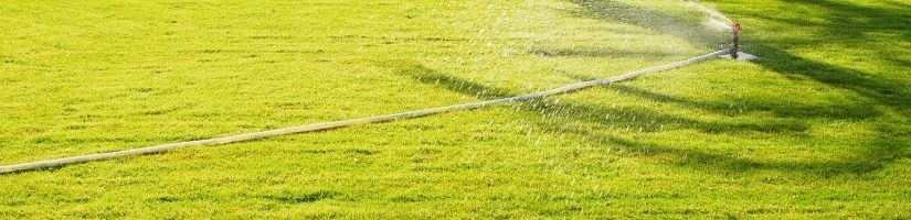 Motion-activated water sprinkler