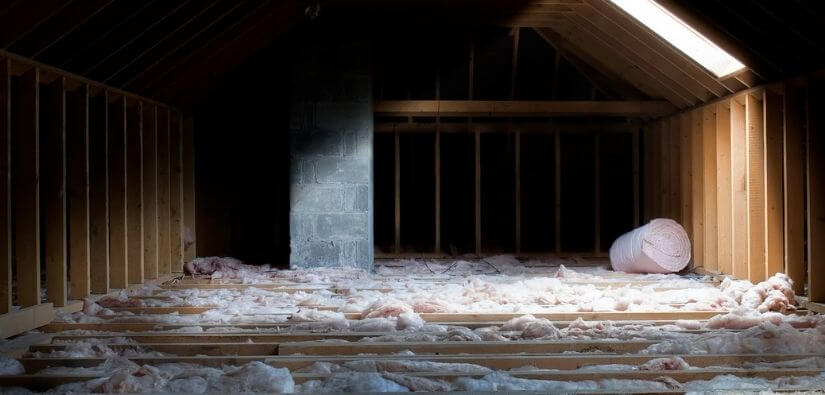 Make Sure Your Attic Is Clean of Animal Waste